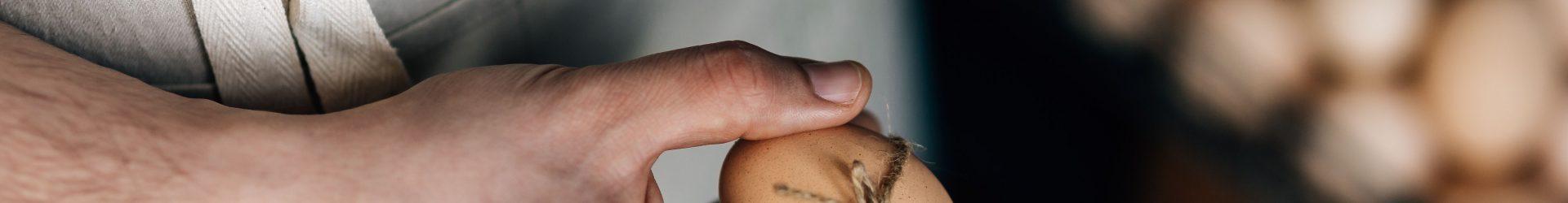 Zootecnia – Inclusione sociale attraverso lo sviluppo rurale